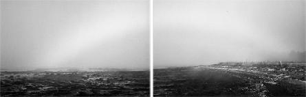 Bifrost by Birthe Havmoeller
