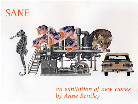 The SANE exhibition poster by Anne Bentley
