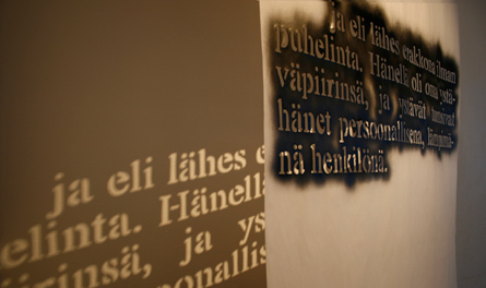 Text about Manner, installation by Laura Lilja 2010-11