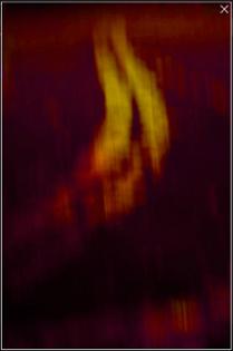 Yin resurrections - chillifinger by Siv D. Rognstad
