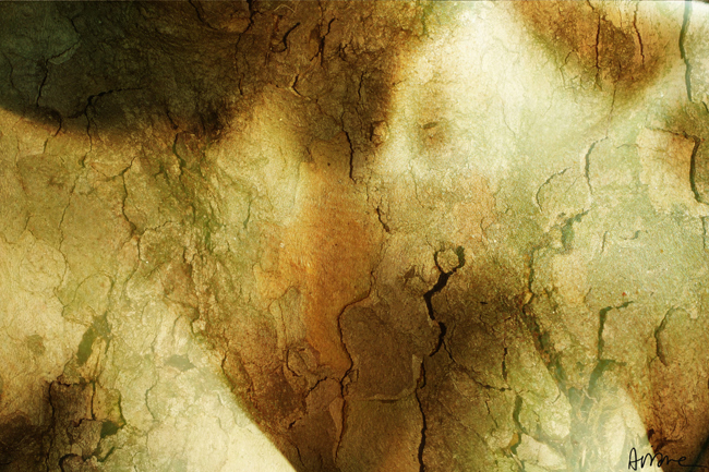 Copyrigth Ariane Sirota