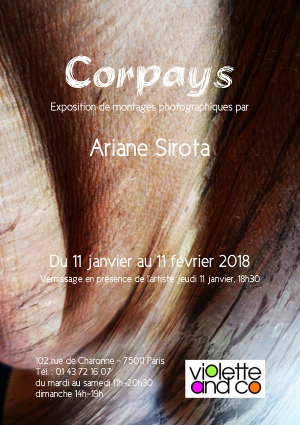 Copyright Ariane Sirota
