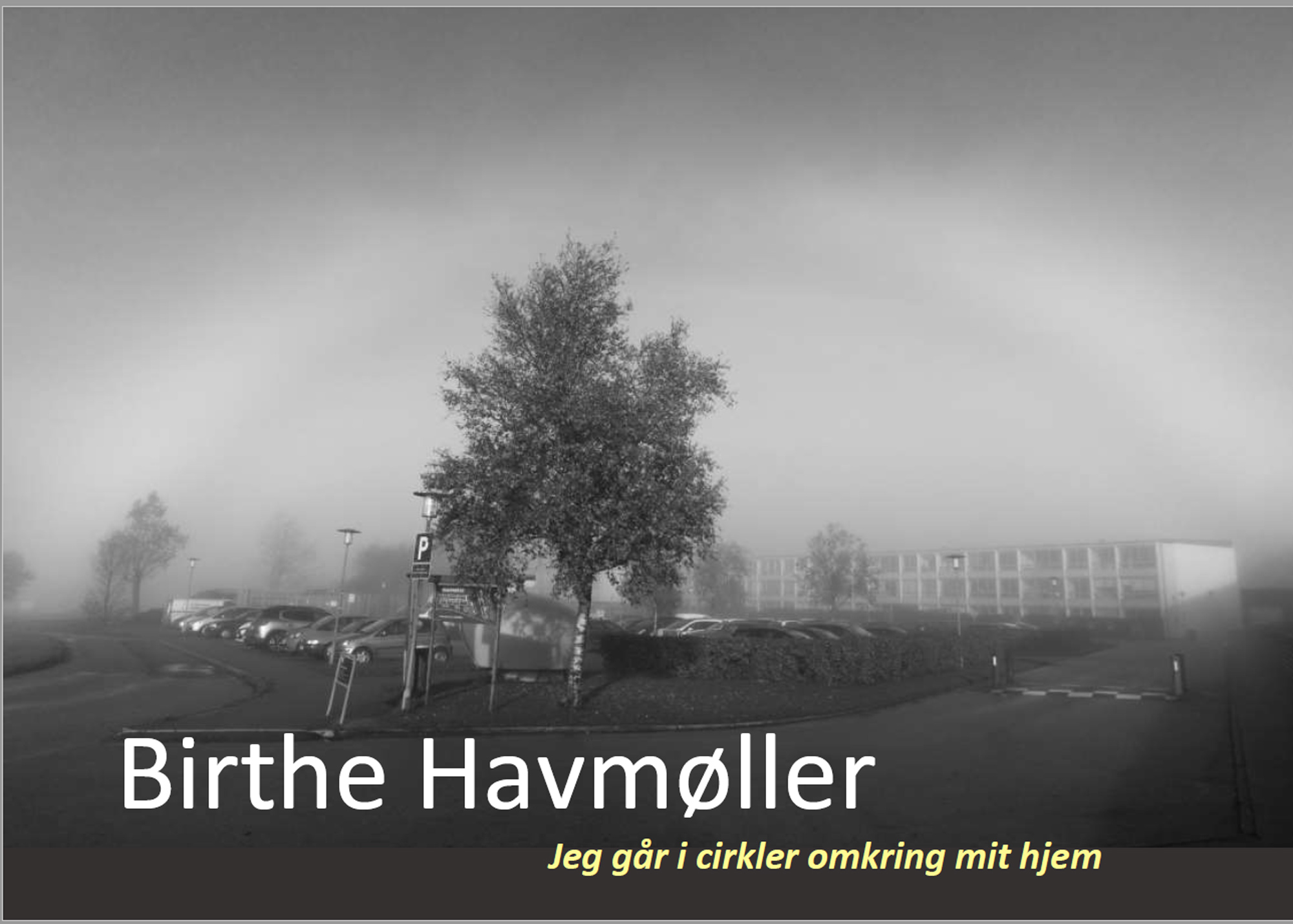 Book cover, copyright Birthe Havmøller
